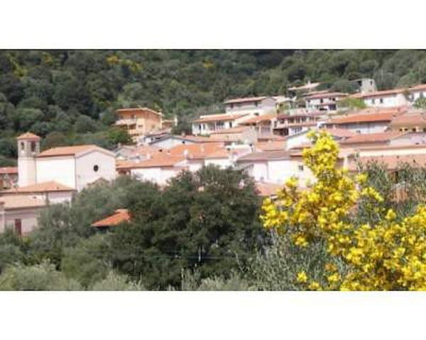 Brunella  vacanza economica - Brunella