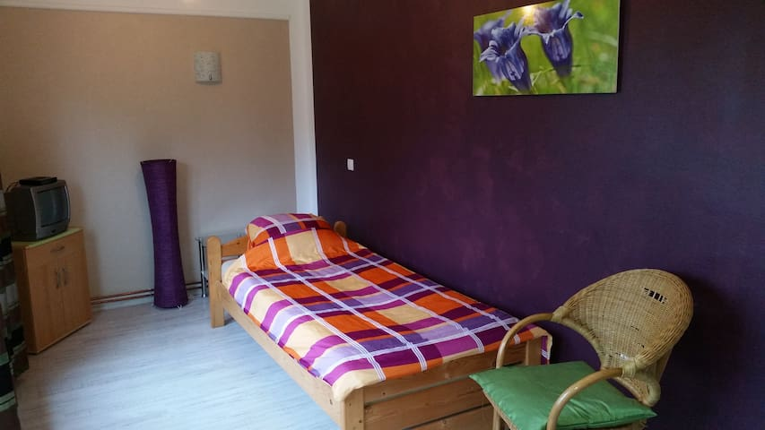 Large BedandBreakfast with landscapeview.
