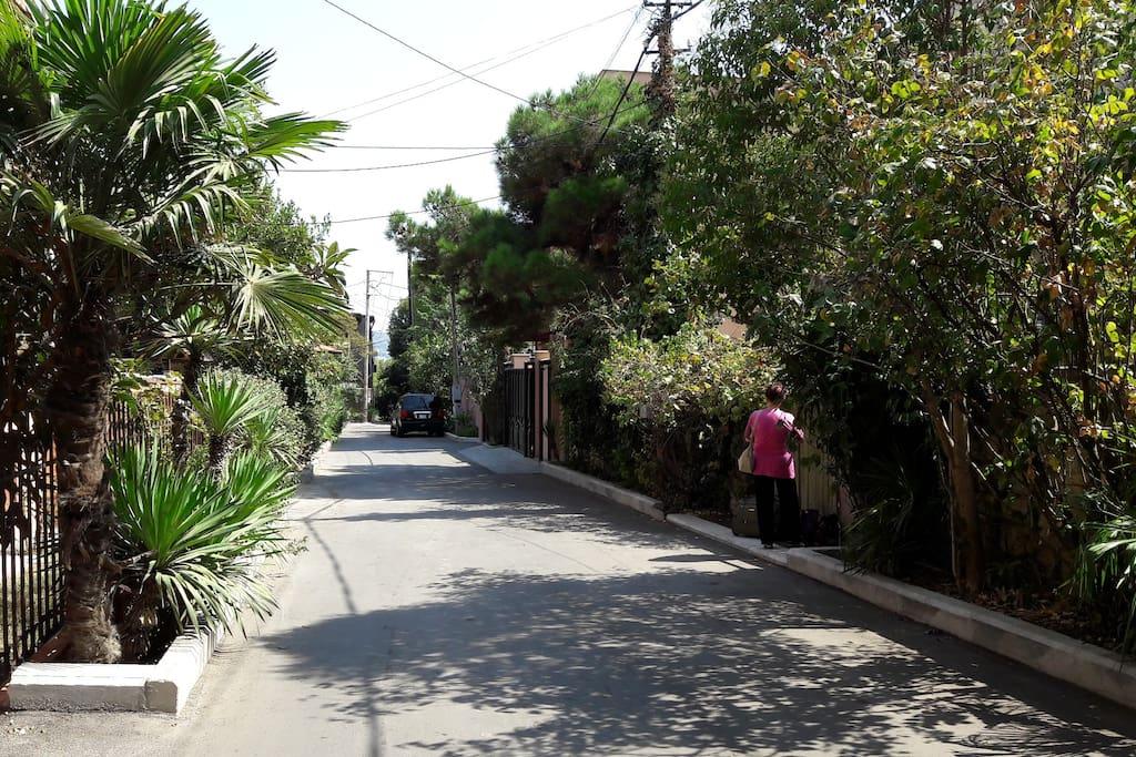 Самая маленькая, зеленная и красивая улица в Тбилиси – ул. Очамчири