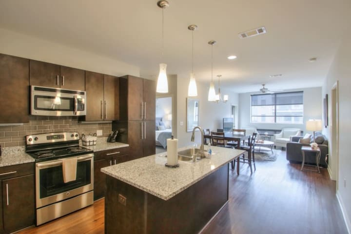 Luxurious Large 2 bed 2 bath Downtown Condo- #202