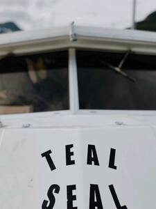 Teal Seal