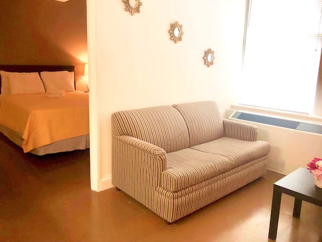 Lovely 8th Floor Pet-Friendly Downtown Apartment