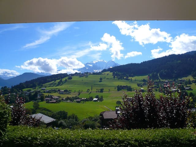 Petit Studio charmant + terrasse avec vue sur le Mont Blanc