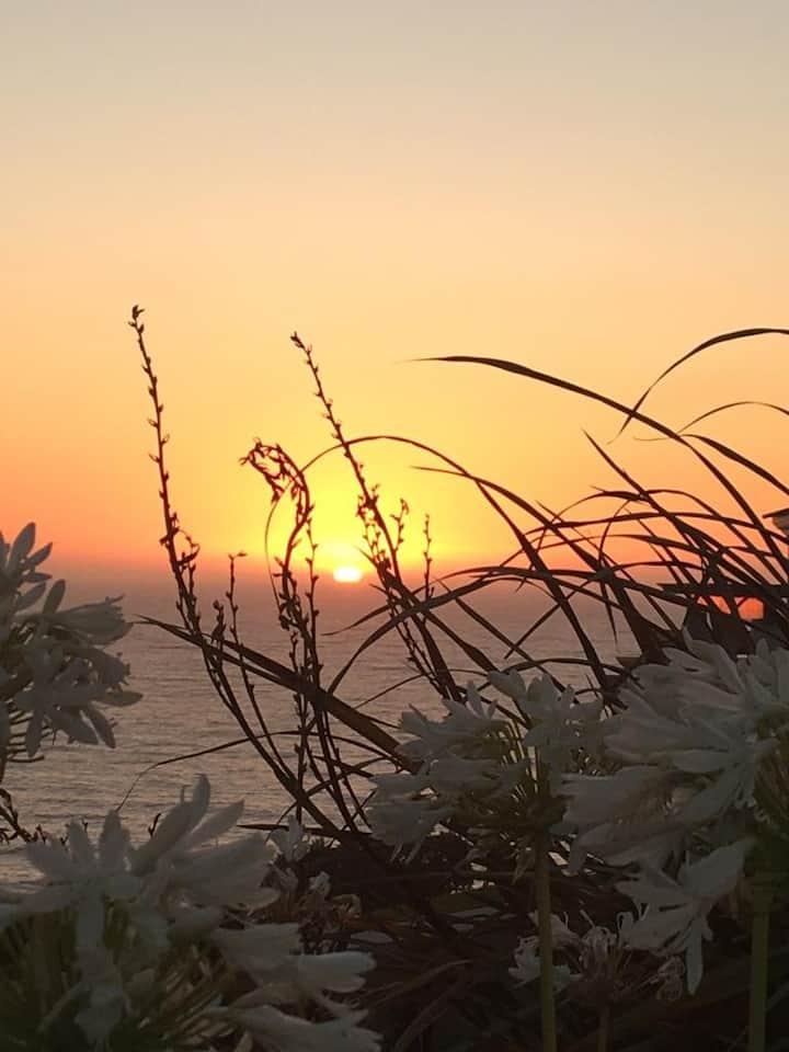 Lilly Beach House - Pedra do Ouro- Férias de sonho