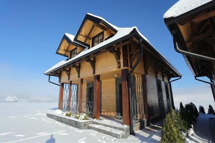 Luxury villa Kopaonik