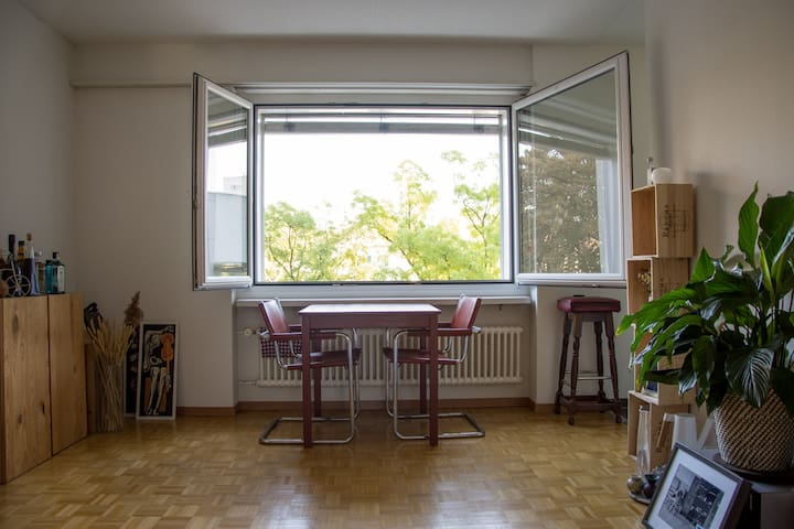 Simple and cozy bright furnished appartment! - Zürich - Condominium