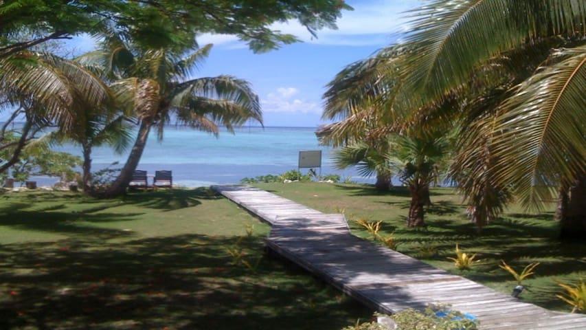 island - Lautoka - Bed & Breakfast