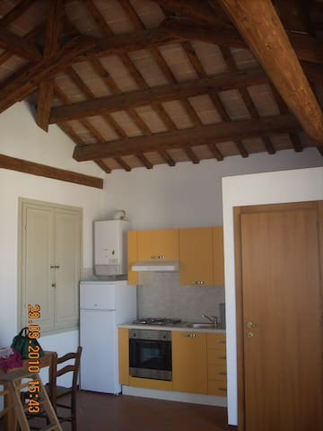 altana in palazzo del 700 a Faenza (RA) - Faenza - Appartement