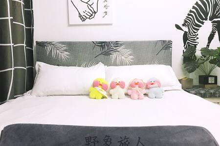 野象旅人【mini】—市中心独立精装北欧ins温馨小公寓,步行可达水亭街,衢州学院一桥之隔。