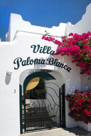 Magnificent view suite close to Costa Azul beach - San José del Cabo - Villa