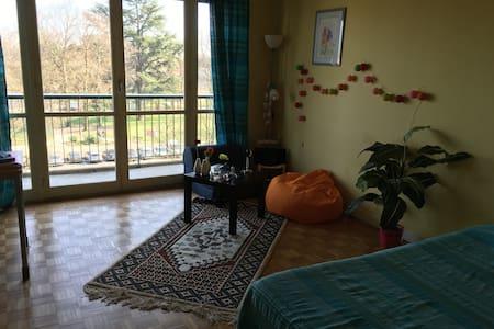 chambre à deux pas du centre ville - Chalon-sur-Saône