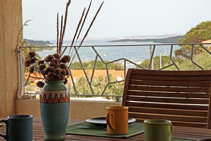 Lovely house with sea view (4 pax) - Porto Pozzo - Lakás