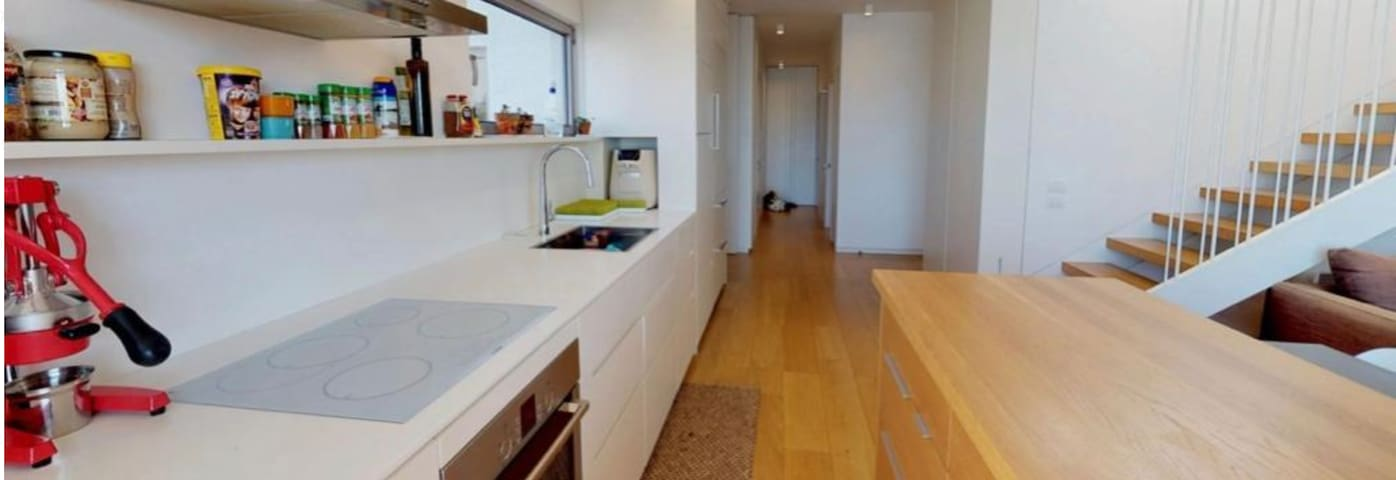 Fully renovated duplex penthouse in old north TLV