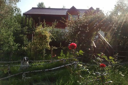 our nice holiday house - Râșnov - Βίλα