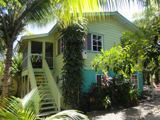 One World Rentals! LOCATION, LOCATION, LOCATION! - Placencia