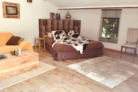 Chambre indépendante avec terrasse.