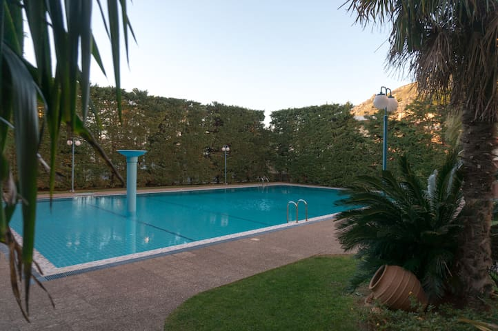 There is a shared swimming pool available to guests