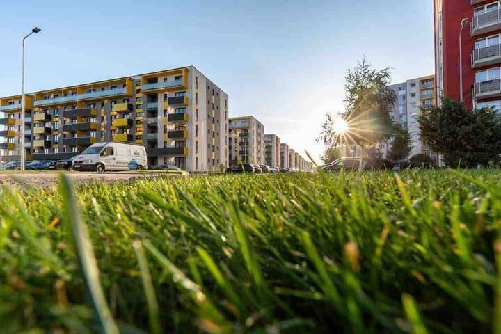 Nico's Home with private parking Braşov