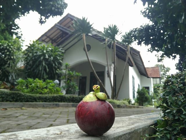 Villa Trawas (Villa Manggis)