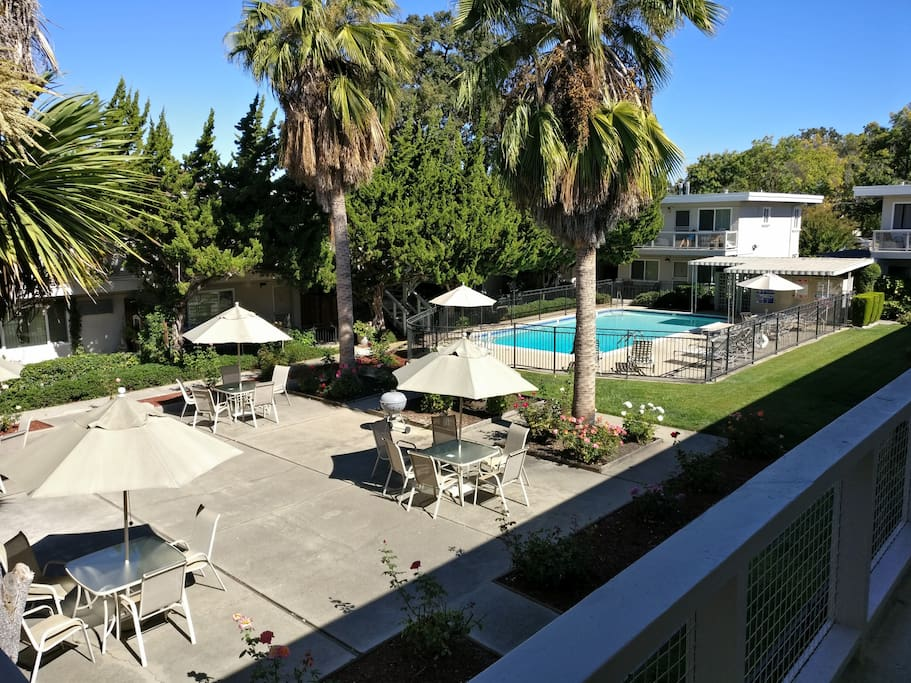 Beautiful Quiet 1bd Apt In Palo Alto Near Cal Ave Apartments For Rent In Palo Alto