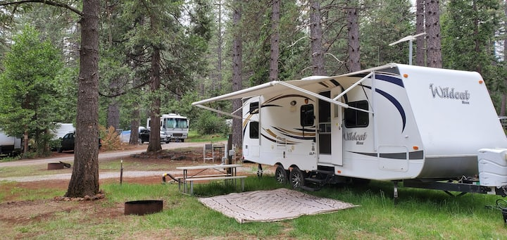 Wild Cat Glamping Camper RV Trailer