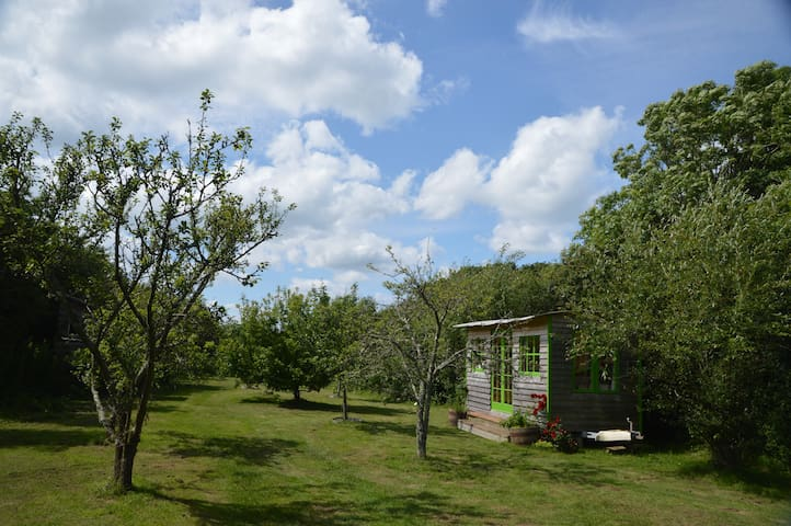 2 comfortable cabins in a beautiful orchard