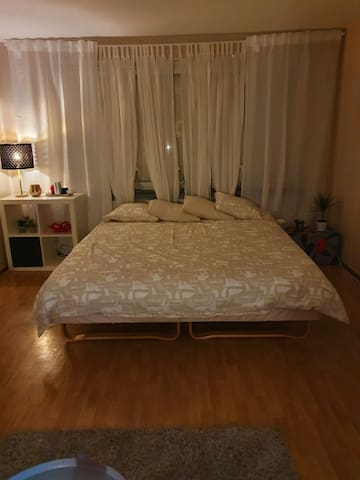 Clean and spacious room for rent