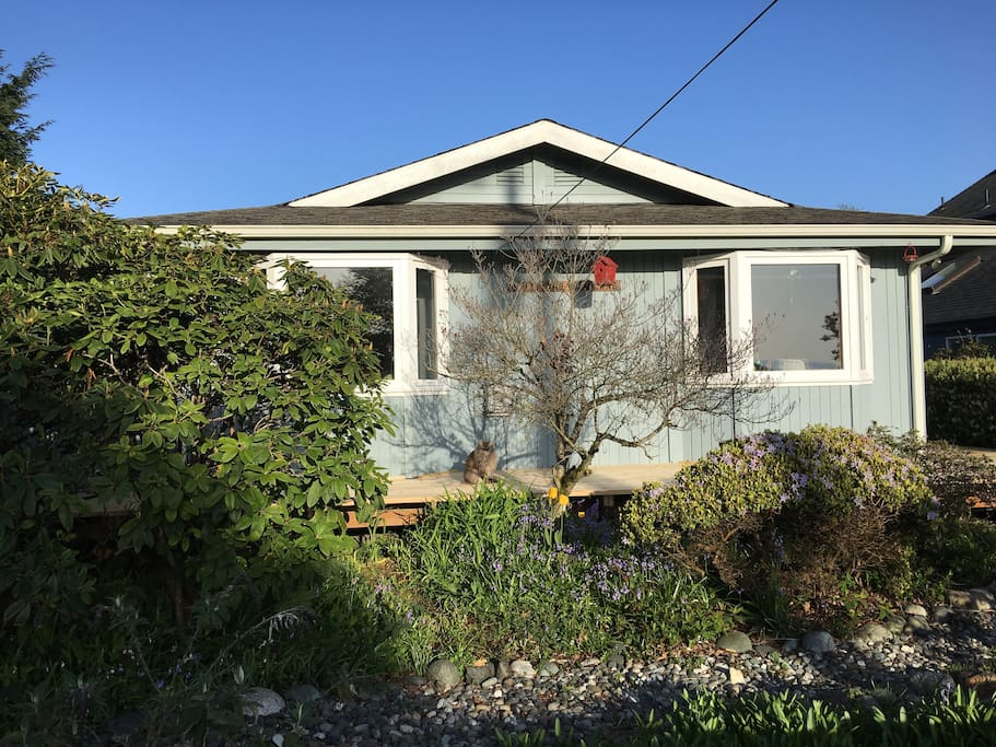 Room For Rent In Langley Wa