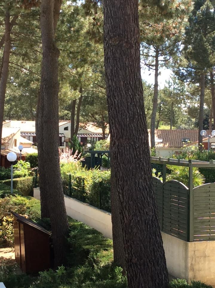Appt résidentiel au coeur des pins