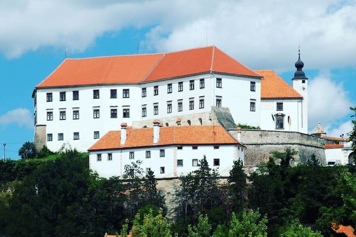 Private room for 4 in center of town Ptuj
