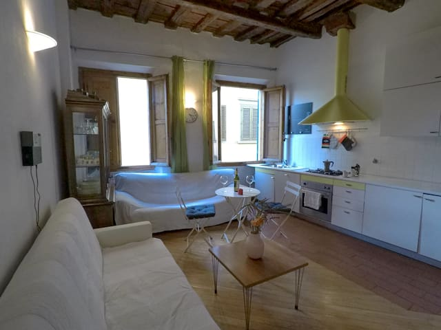 Cozy apartment in heart of Florence (added aircon)