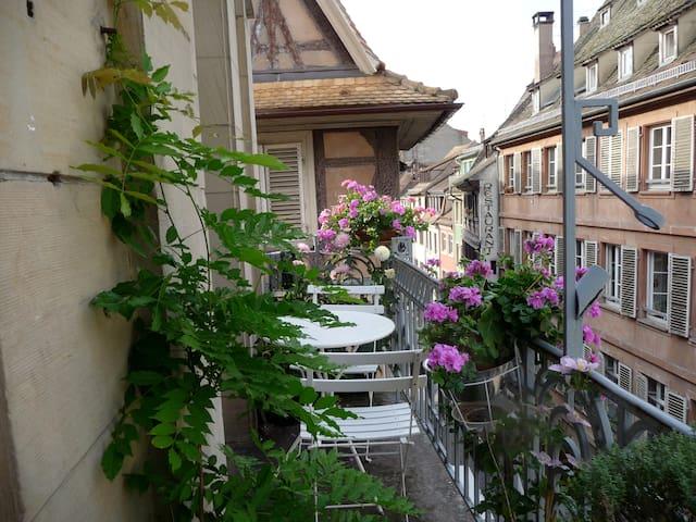 Chambre avec balcon centre ville proche cathédrale