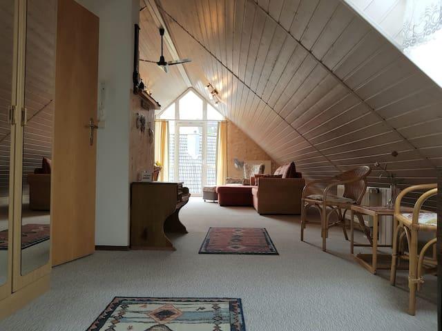 Großzügige und helle Dachwohnung 100qm