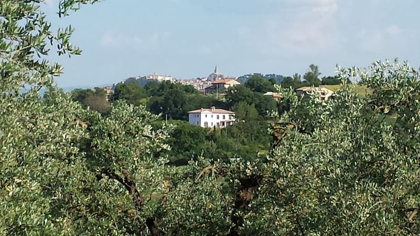 Todi 2 bed Cottage views 4 person pool sun terrace - Cecanibbi