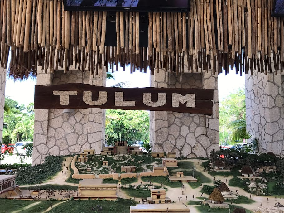 You are in Tulum, so be sure to stop in to Xelha Eco-archeological park.