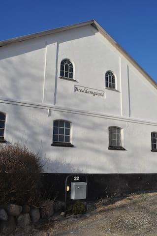 Breddamgaard - Gjøl  - Aabybro - Bed & Breakfast