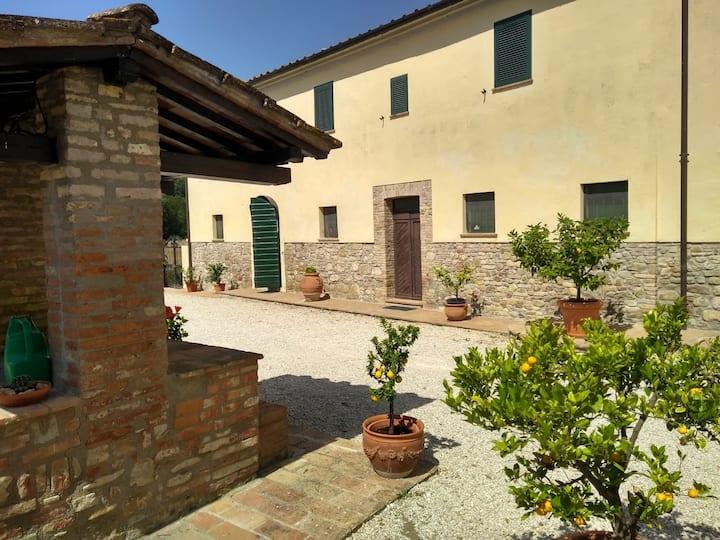 Il girasole a pochi km centro di Perugia