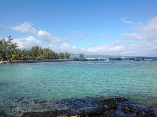 2/1 oceanfront swim with turtles! - Hilo - Huoneisto