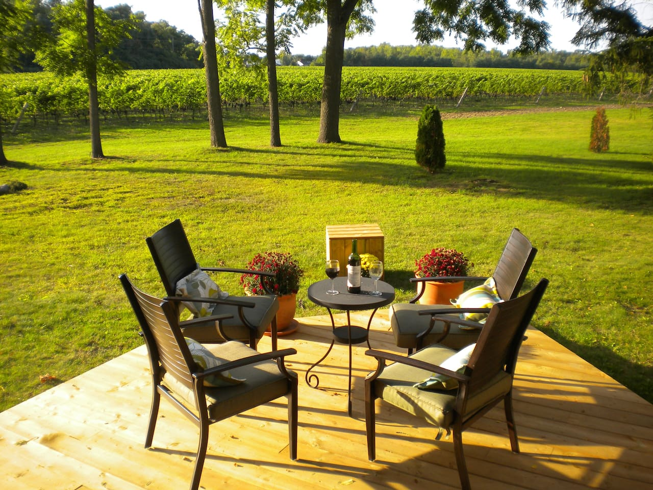 Patio overlooking vineyards is available for guests use.It is a place where breakfast is served - weather permiting