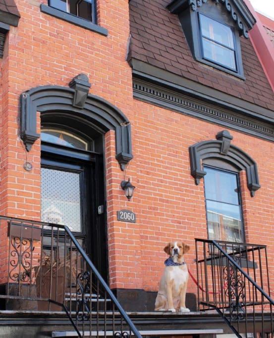 Une maison d'histoire et de cachet, dans une des plus belles petites rues de Montréal
