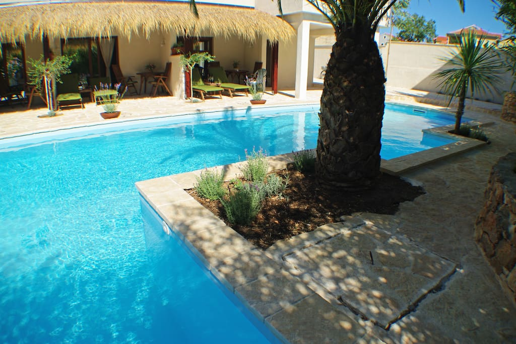 POOL 50m2 is shared with 6 studio apartments  (12 persons)