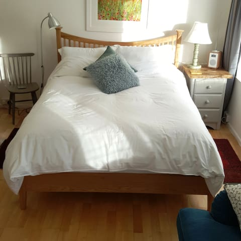Spacious comfortable Kingsize room, TV & parking - Totnes