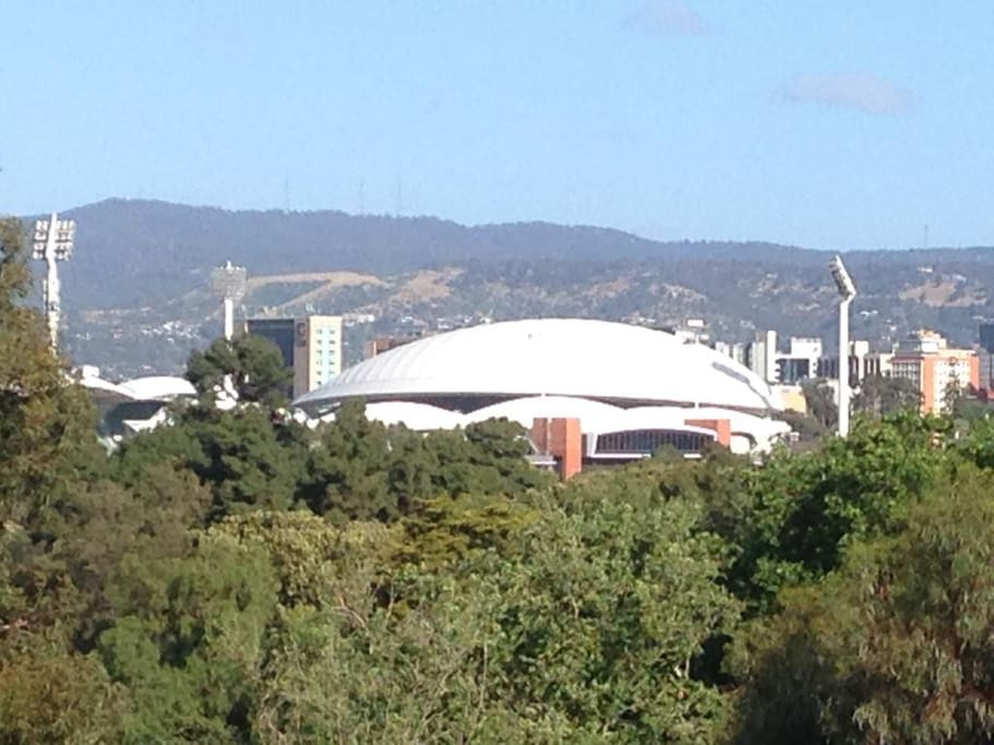 Close up view of the Adelaide Oval.