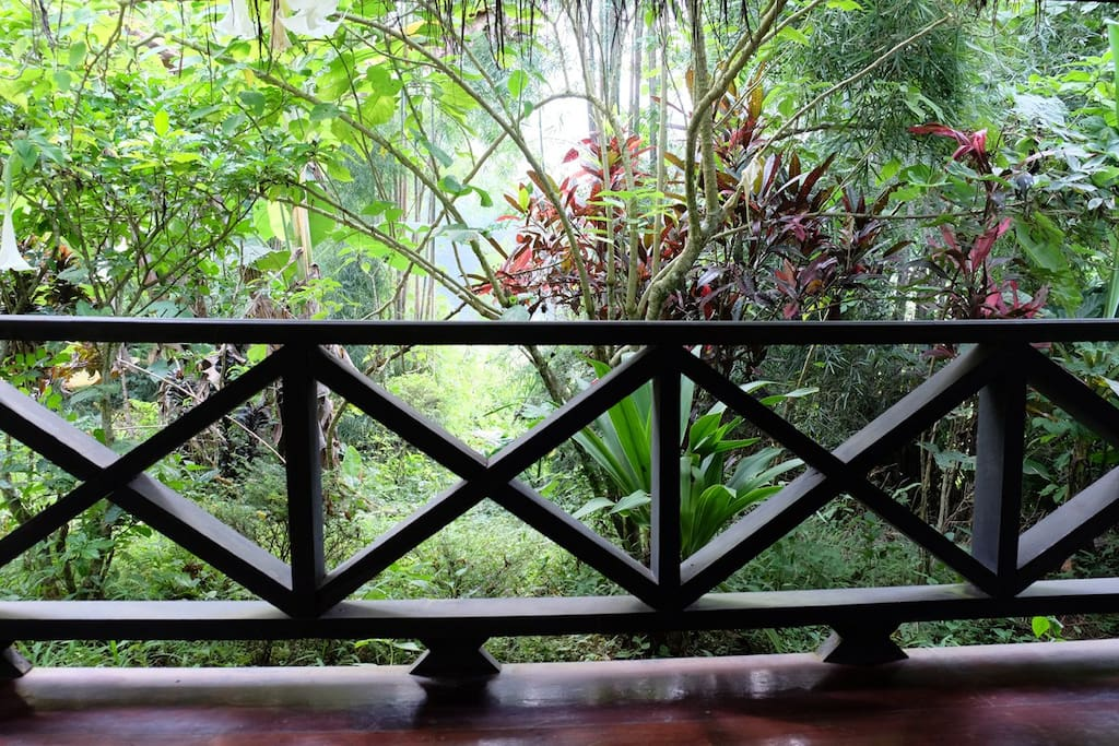 Views over the lush tropical garden from every bungalow