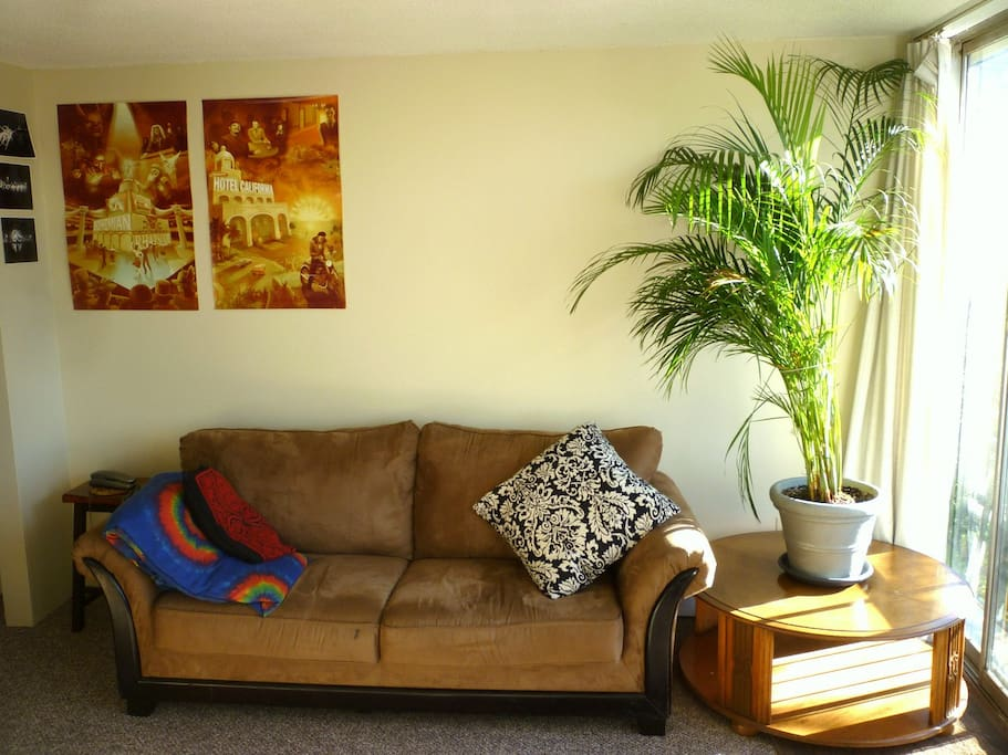 Funky suede sofa with the master of the house: my palm