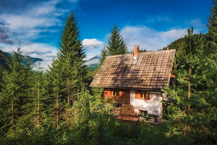 Romantic Cabin in beautiful Alps - Zgornje Jezersko - Hytte