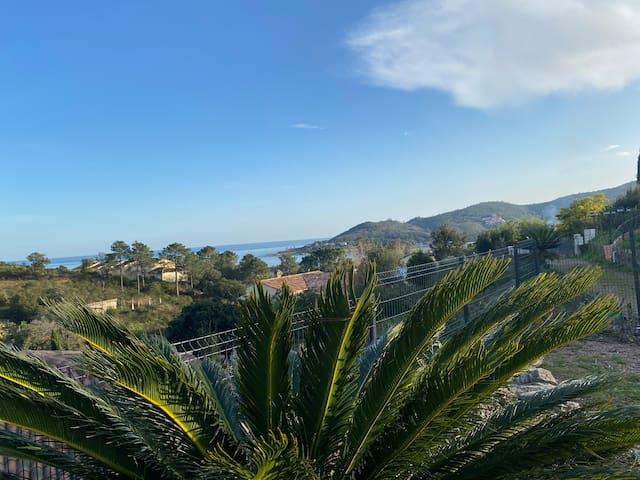"🏖T2 ""A Filetta"" vue mer avec piscine"