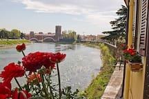 Vista sull'Adige e su Castelvecchio