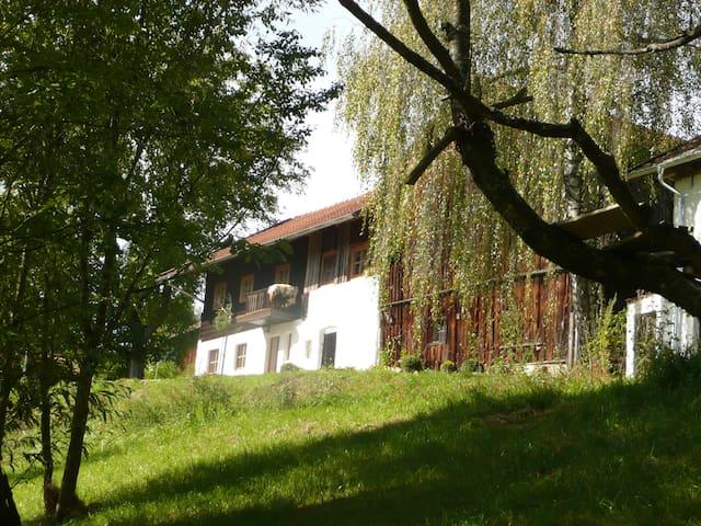 Romantische Wohnung auf altem Hof - Konzell - Talo