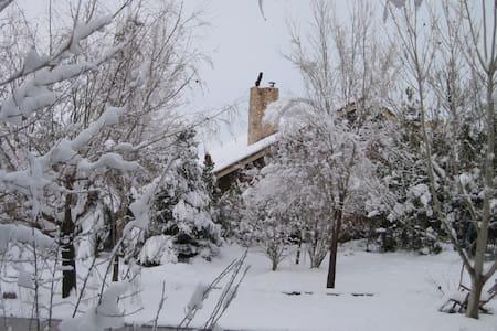 Casa en el campo con encanto - Almansa